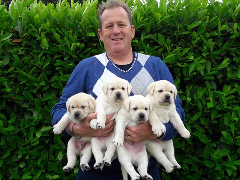 Consegna cuccioli a domicilio